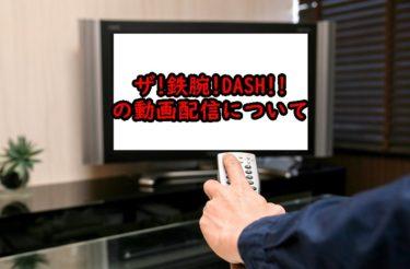 鉄腕ダッシュの見逃し配信や過去回の動画配信はある?